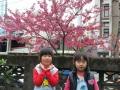107.2.21櫻花樹下合影-